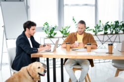 dog in meeting room